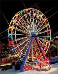 Faller 242313  Ferris Wheel Light Set - 24 Bulbs & Transformer